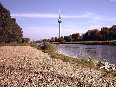 heidelberg2/mannheim_g2